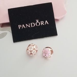 Pandora Rose Gold Summer Bundle